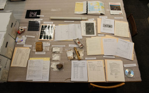 The elements of an archaeological collection